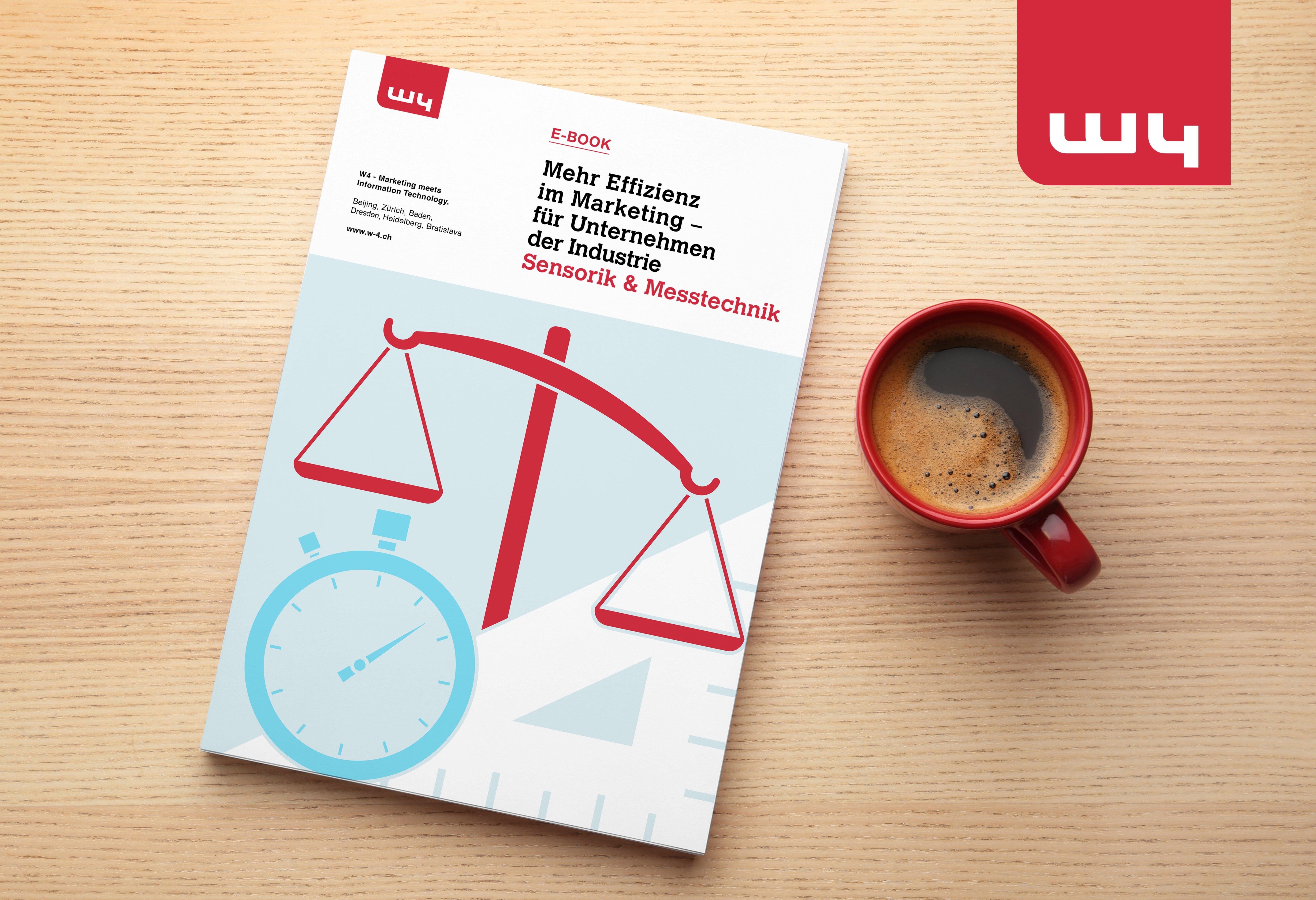E-Book Effizienz im Marketing