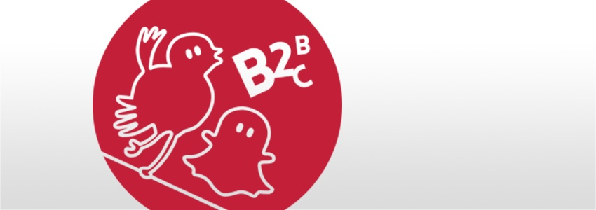 180419_Blog_B2B-B2C_850x300